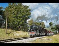Goods Train 43106