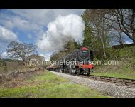 70000 Waverley Headboad