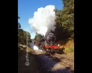 61994 at Beck Hole Bend
