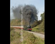 7822 Foxcote Manor with a Blood and Custard Rake