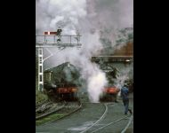 Dame at Grosmont tunnel